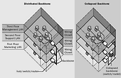 Backbone in Networking: Distributed Backbone and Collapsed Backbone