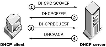 DHCP - Explaining DHCP process.