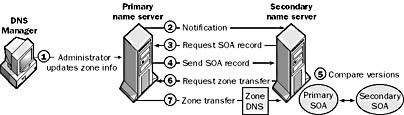 Zone transfer in standard DNS on Windows Server