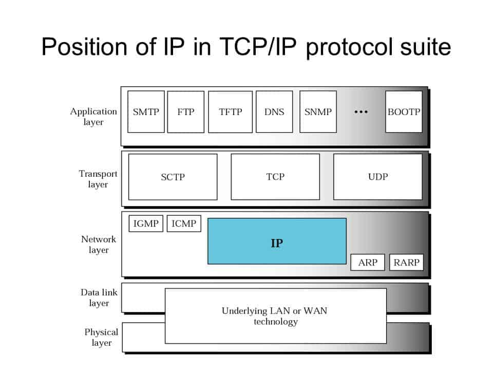 Position of Internet Protocol in TCP/IP protocol suite